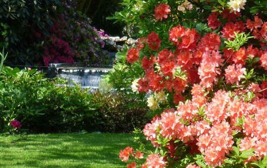 Entretien de votre jardin for Entrepreneur de jardin