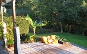 Réalisation de terrasse en bois