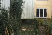 Abattage d'une souche d'arbre gênante (Après)