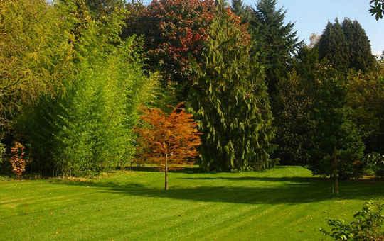 Architecte Paysagiste Et Entrepreneur De Jardin En Brabant Wallon